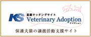 Veterinary Adoption