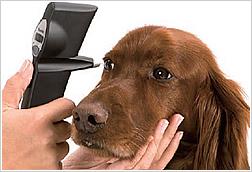 眼圧測定器鏡